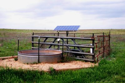 Benefits of Using Solar Pumps to Water Livestock